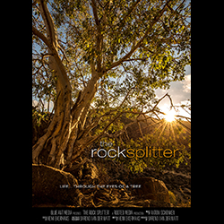 Rooted - The Rock Splitter