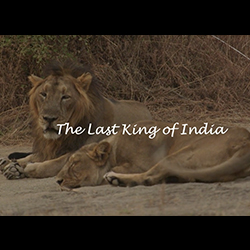 The Last King of India