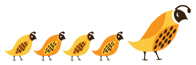 Bird_Row