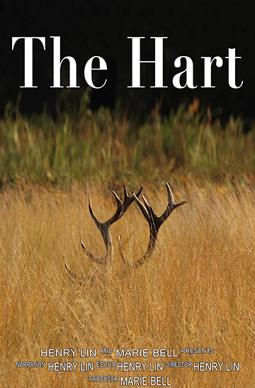 The_Hart-poster_lowres