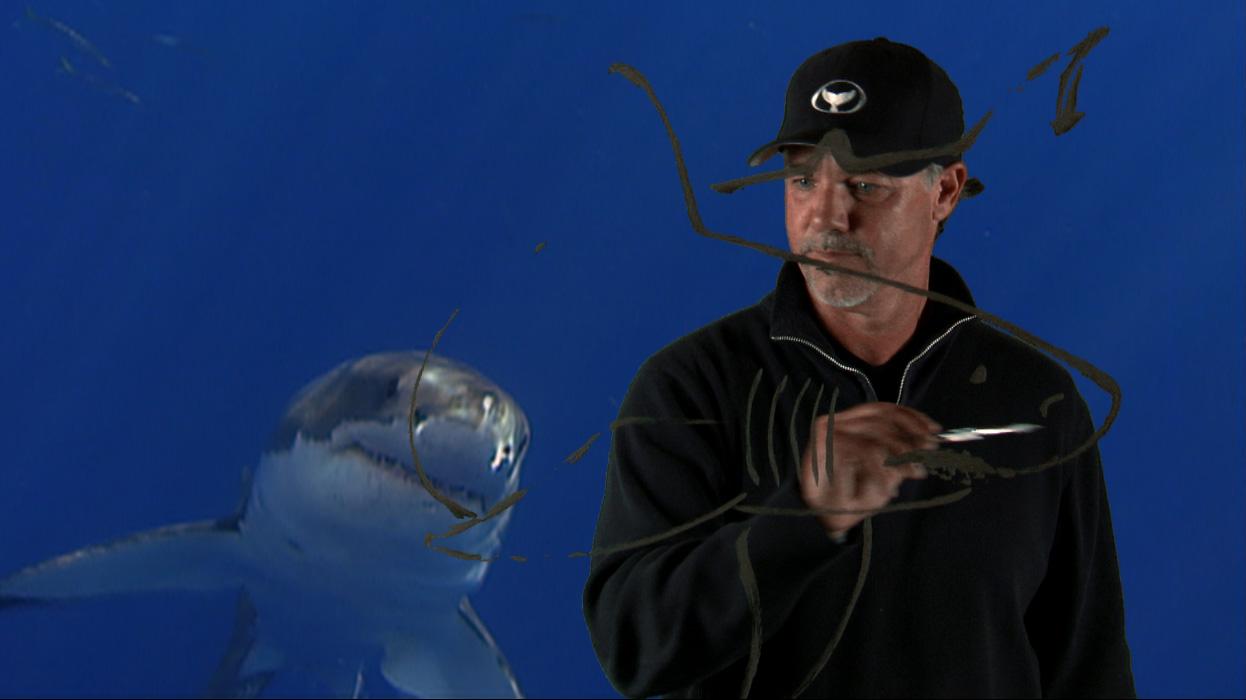 6 Wyland Glass Art Shark Still_03