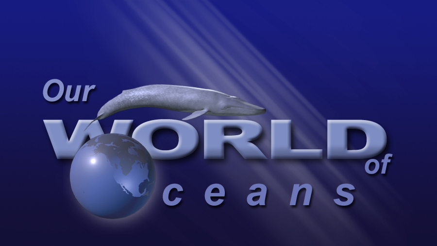 OWOO Logo Blue