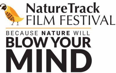 Igniting Passion for Nature through Film